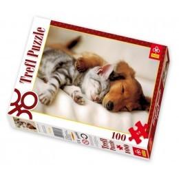 Papírové puzzle 100 - 260 dílků